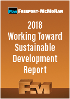2018 Working Toward Sustainable Development